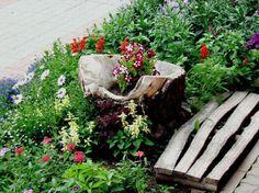 Flores simples, texturas diversas, em harmonia.  Fotografia: Panda Bored.    http://www.architecturendesign.net/25-old-tree-stumps-turned-into-beautiful-flower-planters/