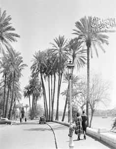 لقطة من علي كورنيش النيل بالقاهرة سنة 1950