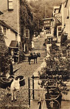 Clovelly, North Devon, UK about 1860, the donkeys are still used today for transporting goods etc