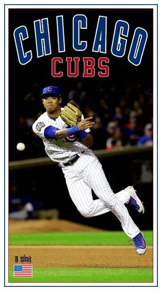 Chicago Cubs World Series, Baseball Cards, Photos, Pictures