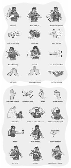 standard-scuba-diving-hand-signals.png 786×1,854 pixels.  Gotta learn them!!!!