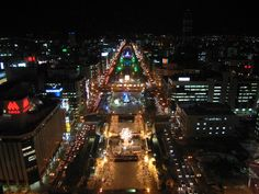 View of Sapporo from the TV Tower - 照明探偵団