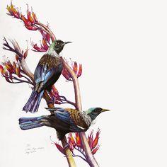 Mosaic Glass, Stained Glass, Tui Bird, New Zealand Art, Nz Art, Kiwiana, Watercolor Paintings, Birds, Wall Art