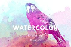 Watercolor Photoshop brush set by The art of Jenteva on @creativemarket