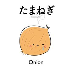 [108]  たまねぎ    |  tamanegi  |  onion