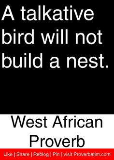 A talkative bird will not build a nest. - West African Proverb #proverbs #quotes