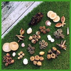 Natural Sensory Exploration Pack | Natural Resources | Early Childhood Education | Nature Craft by TheNaturalReSourcer on Etsy https://www.etsy.com/au/listing/274556150/natural-sensory-exploration-pack-natural