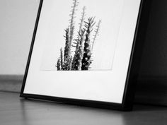Here's one of our top trending art pieces for the fall. This black and white cactus photography wall print has been a customer favorite for weeks, and goes perfect with any modernist home or office.