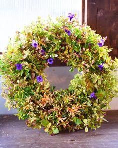 NanaはInstagramを利用しています:「夏物の残りでリース。 主婦は残り物で一品作りますよ( ´艸`) でも切り戻したから花があまり咲いてないー^^; こちらは鑑賞期が短めなのでお安く御提供予定です💦 #花で免疫力アップ #ネットショップ #実店舗 #ふじみ野市 #ギャザリング #埼玉…」 Floral Wreath, Wreaths, Instagram, Home Decor, Floral Crown, Decoration Home, Door Wreaths, Room Decor, Deco Mesh Wreaths