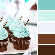 This is the color I had in my head for my room,the frosting blue, almost daquiri ice cream color and accents of copper pieces all over.not the brown paint,maybe grey