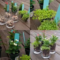 a blog full of weldons: teacher gifts {DIY simple mini-terrarium}