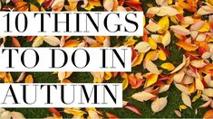 10 THINGS TO DO IN AUTUMN | MRS MELDRUM Stuff To Do, Things To Do, British Youtubers, Fall Season, Autumn, Life, Things To Make, Fall