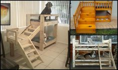 How to build a bunk bed for your pets