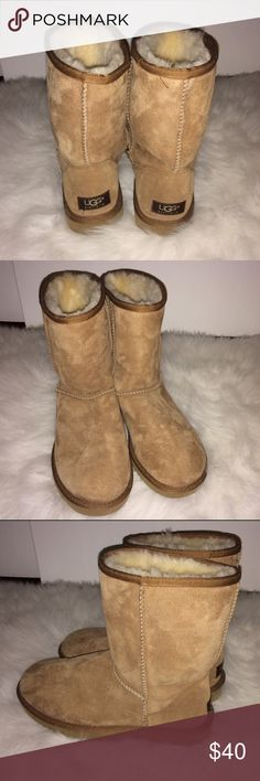 UGG Size 8 Chestnut Classic Short Boots UGG Chestnut Boots. Brand new without tags. Pet/smoke free home. UGG Shoes Winter & Rain Boots