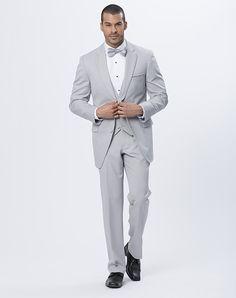 Allure Men Cement Gray suit