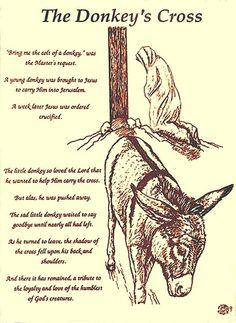 The Donkeys Cross Drawing - The Donkeys Cross Fine Art Print and the donkey helped jesus carry his cross Mini Donkey, The Donkey, Donkey Funny, Donkey Pics, Baby Donkey, Cross Drawing, Donkey Drawing, Christmas Poems, Christmas Donkey