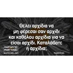 Funny Greek Quotes, Funny Quotes, Jokes, Humor, Funny Phrases, Husky Jokes, Funny Qoutes, Humour, Memes
