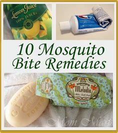10 Mosquito Bite Remedies - Mom Mart