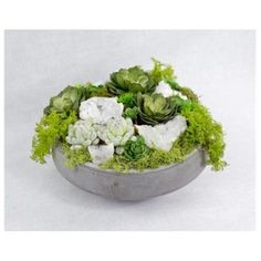 T&C Floral Company 14 x 8 in. Succulents And Quartz In Concrete Bowl, As Shown