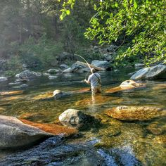 Flyfishing a stream Fishing Pictures, Sports Pictures, Destin Fishing, Yellow Fish, Canvas Painting Landscape, Gone Fishing, Trout Fishing, Fish Art, Outdoor Life