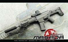 Magpul Masada.  Wish they didn't let Bushmaster produce it.