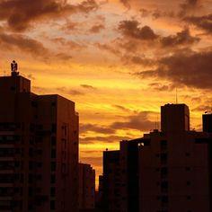 Que curioso, o dia - antes, rosa - está amanhecendo amarelo nesses dias de verão... 😊 Aliás, que lhes venha um dia cheio de luz, meus amores ✨✨✨ #acordabonita #igerses