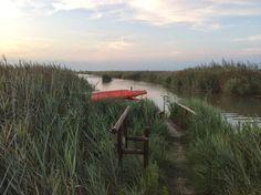 Living Ravenna: In barca elettrica tra Ortazzo e Ortazzino a Savio (RA) nel Parco del Delta del Po