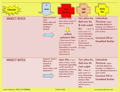 Joette Calabrese First Aid Chart Sample page