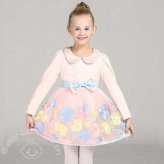 Pink Multi Colour Floral Embroidered Autumn Dress