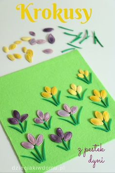 pumpkin seed crocus craft idea for kids You are in the right place about Spring Crafts For Kids with autism Here we offer you the. Seed Crafts For Kids, Spring Crafts For Kids, Mothers Day Crafts, Summer Crafts, Hobbies And Crafts, Fun Crafts, Diy And Crafts, Seed Art For Kids, Spring Activities