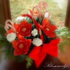 poinsettia candy canes