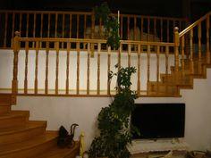 Schody dębowe wykonane przez Stolarstwo Szudera www.stolarstwoszudera.pl Stairs, Home Decor, Stairway, Decoration Home, Room Decor, Staircases, Home Interior Design, Ladders, Home Decoration