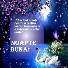Noapte... Good Night Image, Sleep Tight, Touching You, Fun To Be One, Sweet Dreams, Night Quotes, Ecards, E Cards, Sleep Well