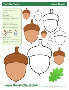 Acorn Templates, free for personal arts and crafts projects. For high resolution JPEG (1200x 927) please visit:  http://www.timvandevall.com/shape-templates/acorn-templates/
