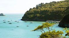 California Coast, California Travel, Humboldt County, Trinidad, San Diego, Lost, Sunset, Beach, Water