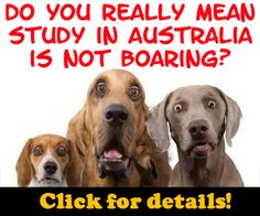 Study in Australia with the Virtual Student Agency. Their services are free for international students!               http://virtualstudentagency.com/