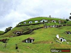Hobbit Town, Matamata, New Zealand