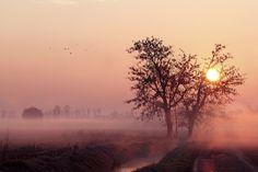 The Morning by marco simonato, via 500px