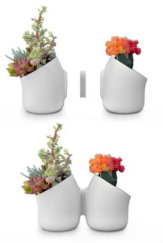 Shoebox Dwelling: Vertical magnetic garden. www.myurbio.com