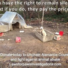 Help animals in abuse, neglect and cruelty cases - Laws for Paws is the only licensed investigative agency in NC devoted   to animal abuse, neglect and cruelty cases. We also investigate cases   of abandonment, dog fighting and bait operations, illegal breeding and   puppy mills. We are currently ...