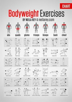 best exercises targeting each muscle group | Download this A4 Bodyweight Exercises Chart!