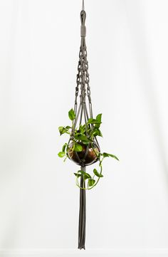 Macrame plant hanger, white cotton rope with natural beads. Made from cotton and natural beads, this hanger is best suited to indoors or under cover. Sold without vase & plant. Macrame Plant Holder, Macrame Plant Hangers, Plant Holders, Fish Bowl Vases, Macrame Projects, Hanging Baskets, Potted Plants, House Plants, Beautiful Flowers