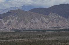 Parque Nacional Los Cardones