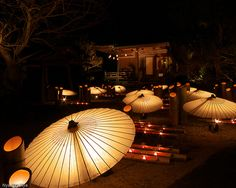Japanese Umbrellas and Bamboo Lanterns