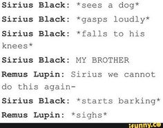 He doesn't even change to his Animagus it's just Sirius barking at a dog