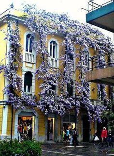 Pescara - Itália