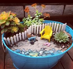 fairy garden-- love the thoughts and images this little flowerpot arrangement evokes! :)