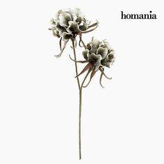 Fiore Spumă Grigio by Homania Homania 10,22 € https://shoppaclic.com/altri-articoli-decorativi/22392-fiore-spumă-grigio-by-homania-7569000916825.html
