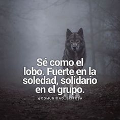 Discover recipes, home ideas, style inspiration and other ideas to try. Wolf Quotes, True Quotes, Motivational Phrases, Inspirational Quotes, Joker And Harley Quinn, Spanish Quotes, Sad, Wisdom, Messages