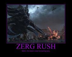 Starcraft II Heart of the Swarm Zerg Rush by Onikage108 on DeviantArt